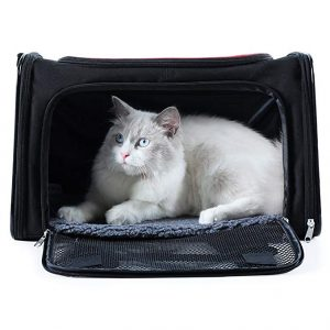 A4Pet Collapsible Cat Carrier