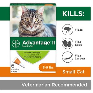 Advantage II Flea Prevention for Small Cats by Bayer