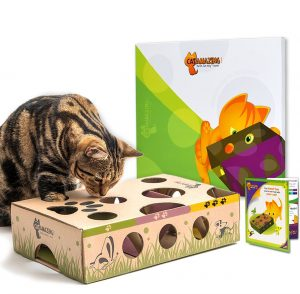 Amazing Interactive Toy & Feeder For Cats By Cat Amazing