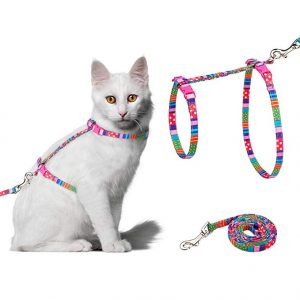 Cat Harness with Adjustable Strap and Leash Set By PupTeck