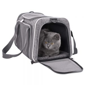 Collapsible Top Loading Cat Carrier By Petisfam