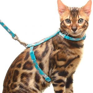 Escape Proof Adjustable Cat Harness and Leash By Cherpet