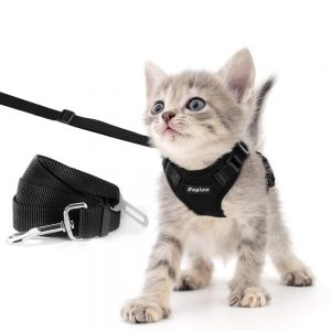 Escape Proof Cat Harness with Leash and Car Seat Belt By Eagloo