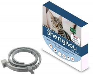 Natural Collar For Dogs And Cats By Shengkou