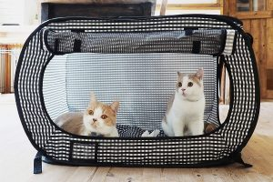 Necoichi's Portable Cat Cage For Travel