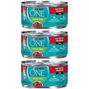 One Beef Recipe Canned Pate Cat Food By Purina