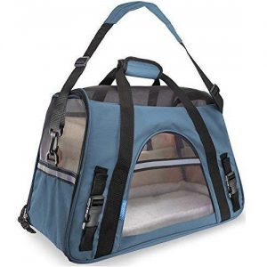 Paws and Pals Best Cat Carrier