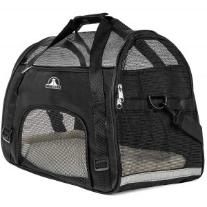 Pet Carrier From Pet Union For Comfortable Travel