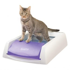 PetSafe ScoopFree Automatic Self-Cleaning Cat Litter Box