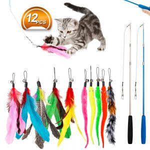 The Multi-Colored Feather Toy By Jiaron